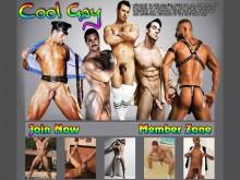 Cool Gay