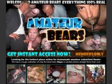 Amateur Bears